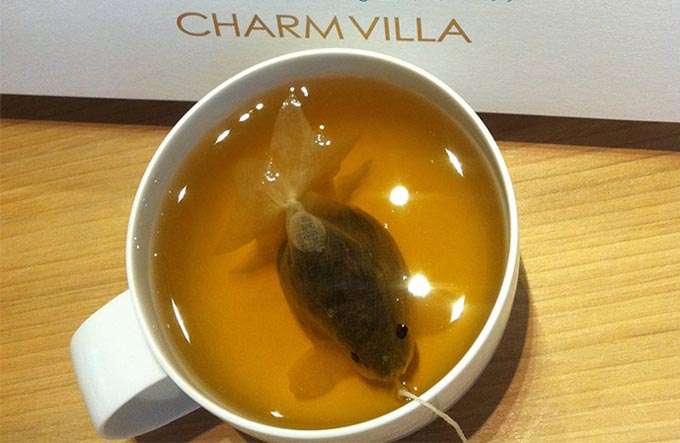 saquinhos_chá_peixe_charme_villa_tramp (7)