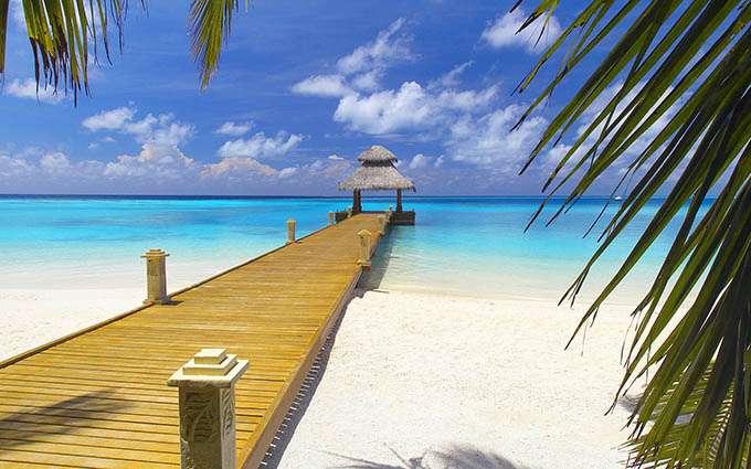 bahamas-tramp